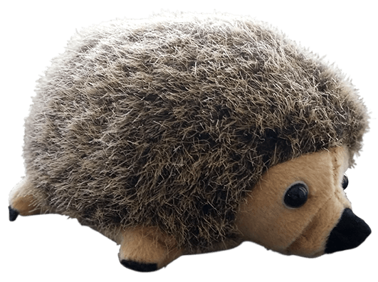 IGEL Hedgehog