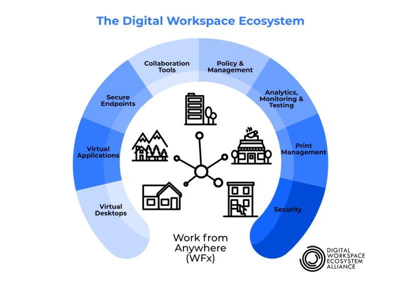 DWEA Ecosystem