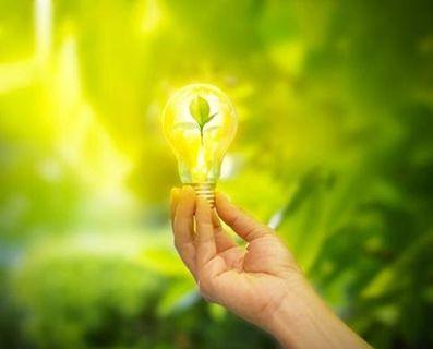hand-holding-light-bulb